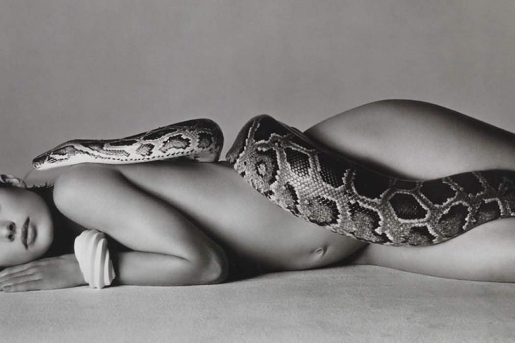 Richard Avedon – Portrait or Fashion Icon?