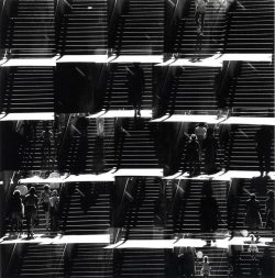 Ray K. Metzker – Potential Realized