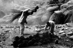 Paulo Monteiro – My Archipelago